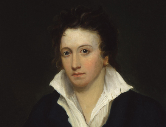shelley portrait